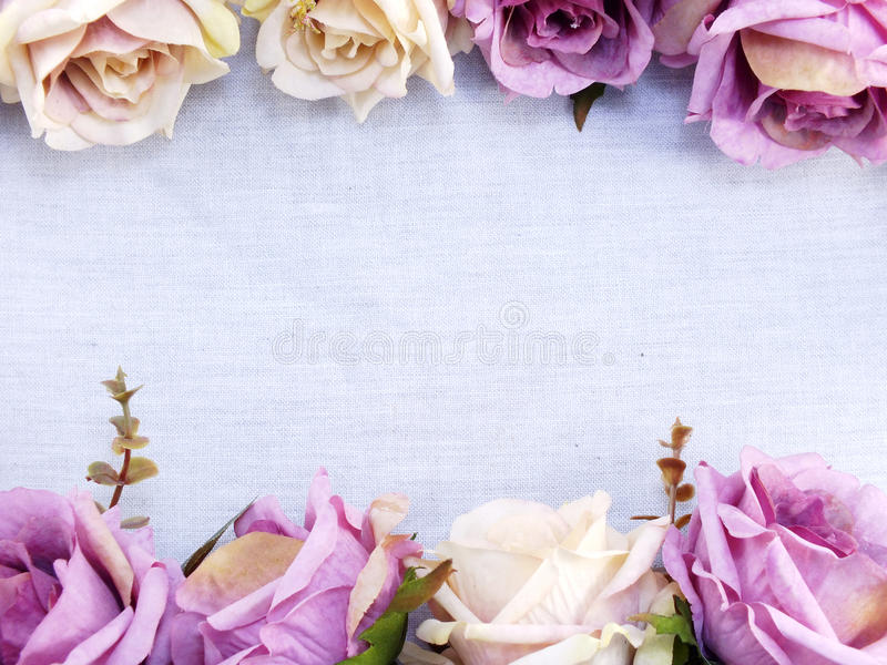 Artificial purple rose flowers on linen copy space border background royalty free stock images