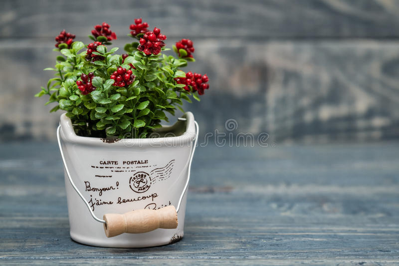 Artificial Red Flower in a Flowerpot. On blue wooden background royalty free stock image