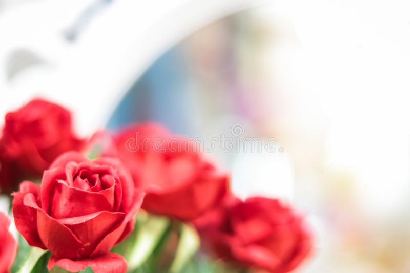 Artificial red roses on blurred background stock images