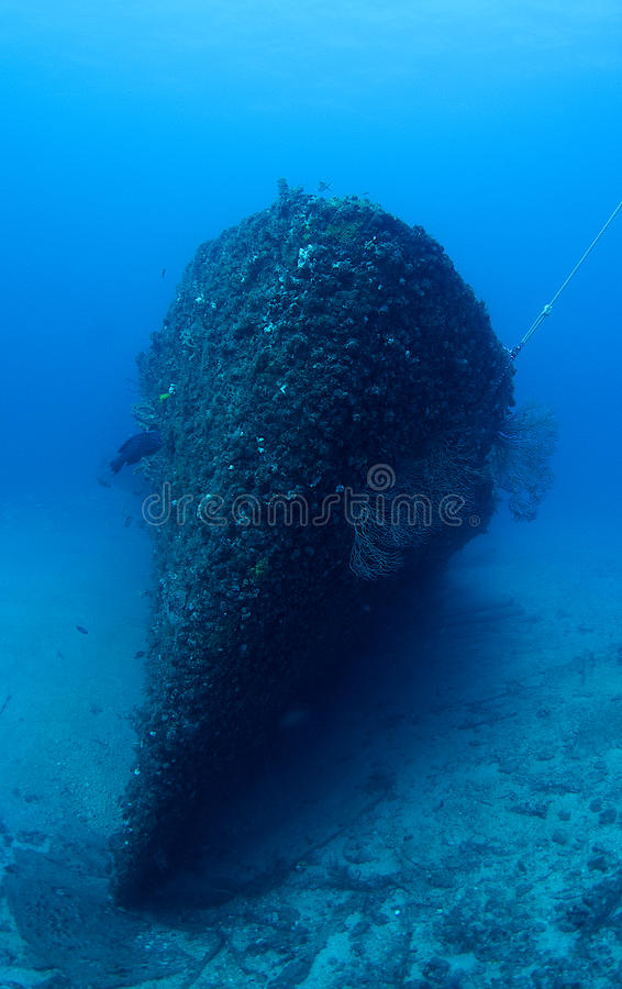 Artificial Reef-Ancient Mariner Royalty Free Stock Photography