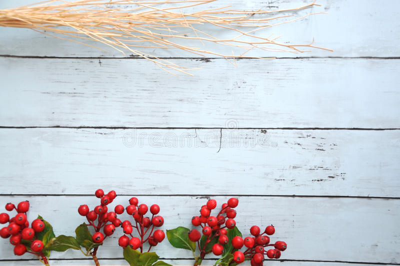 Artificial Ribes with Dried Stick on Blue Wooden Background stock photo