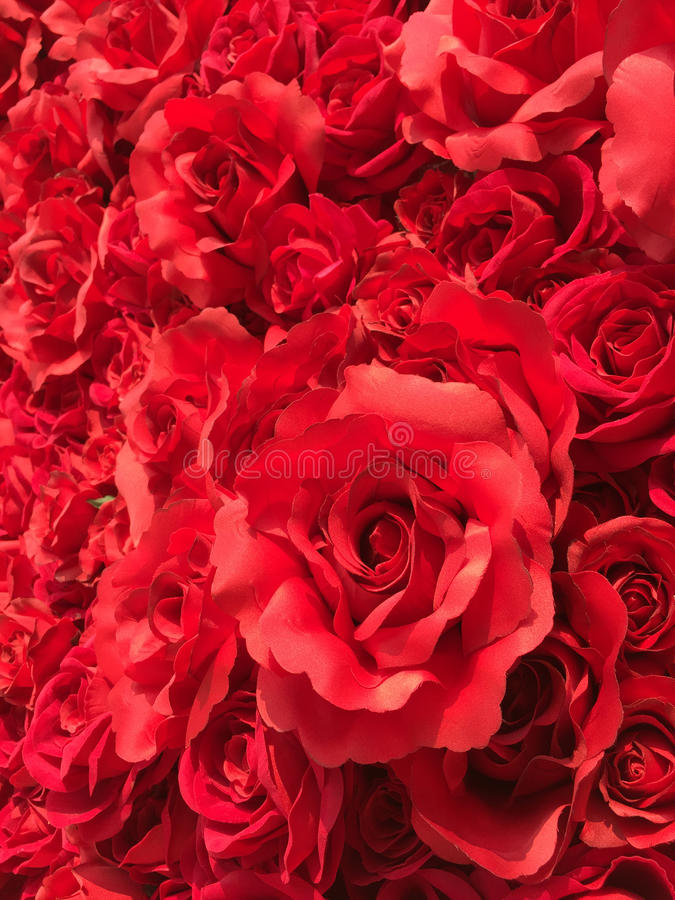 Artificial Roses royalty free stock photography