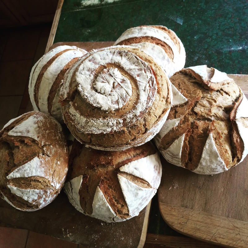 Artisan Sourdough Bread Fresh. Naturally leavened whole grain crusty sourdough wood fired wheat bread with a dramatic contrast of flower and artistic cuts for stock image