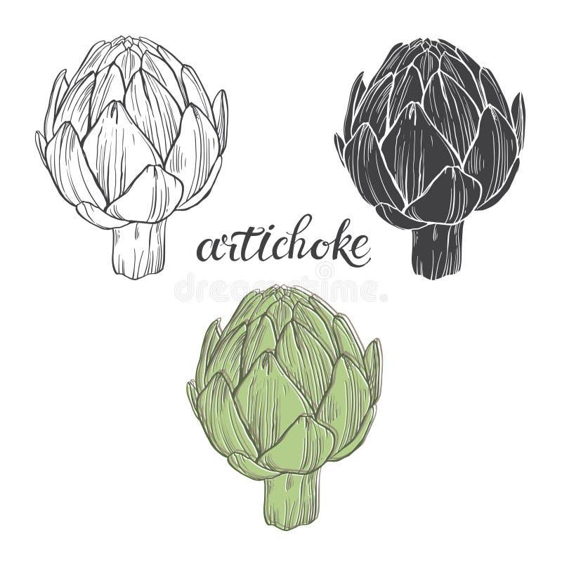 artischocke Vector Illustration, Skizze auf einem weißen Hintergrund Von Hand gezeichnete Elemente für Ihr Design vektor abbildung