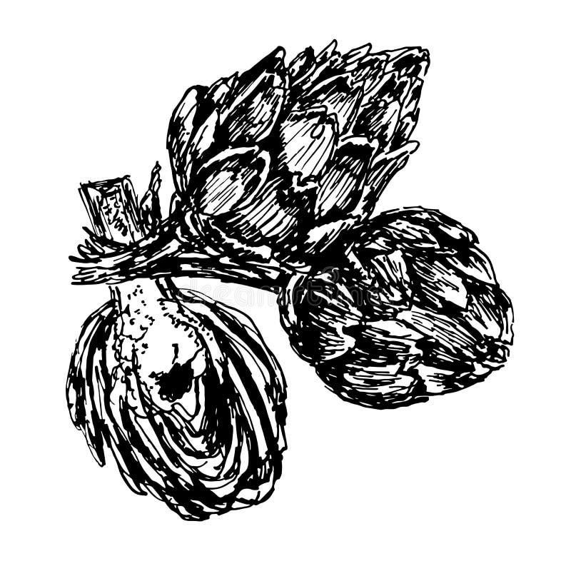 Artischocken-Skizzenillustration des Bildes drei stock abbildung