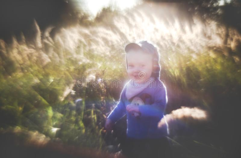 Artistic look portrait of a child in nature, smiling boy. Artistic look portrait of a child in nature, interesting bokeh of manual lens. Boy in nature fields royalty free stock image