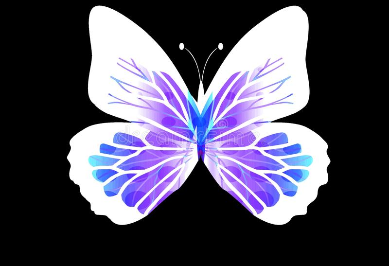 An artistic pattern with butterfly isolated on black background. Illustration design stock photography