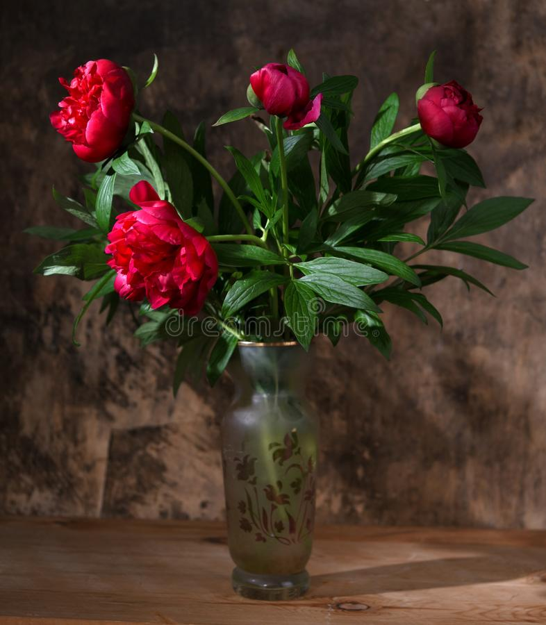 Artistic still life with peonies in vase royalty free stock photography
