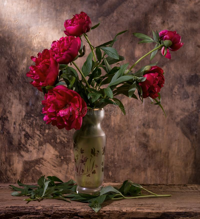 Free Artistic Still Life With Red Peonies In Vase Royalty Free Stock Photos - 148314048