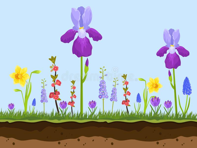 Artoon field flowers, green grass and earth layers on blue background vector illustration. Pink, chamomile and lavender. Iris. Spring and summer field flowers stock illustration