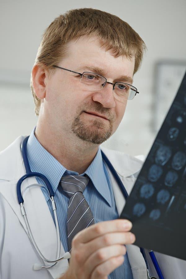 Arts die medisch aftasten bekijkt stock afbeelding