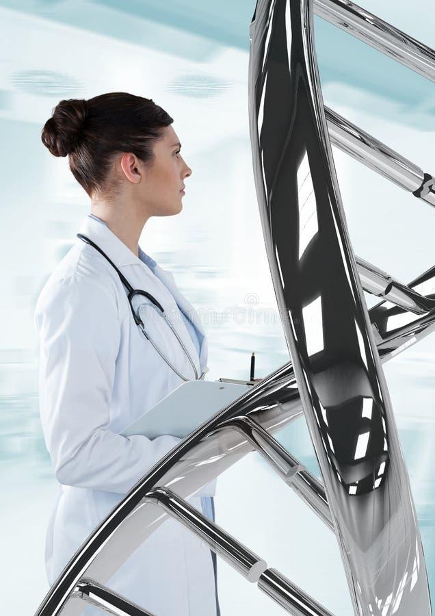 Artsenvrouw die zich met 3D DNA-bundel bevinden stock afbeelding