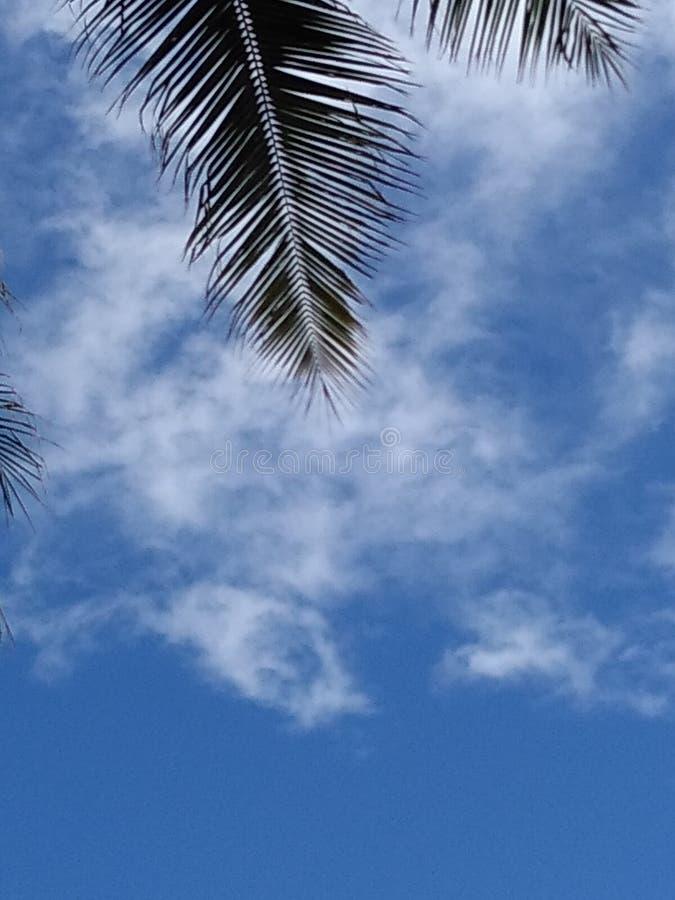 Artsy Surreal Ungewöhnliche Cloudy Nature Imagery my lizenzfreies stockfoto