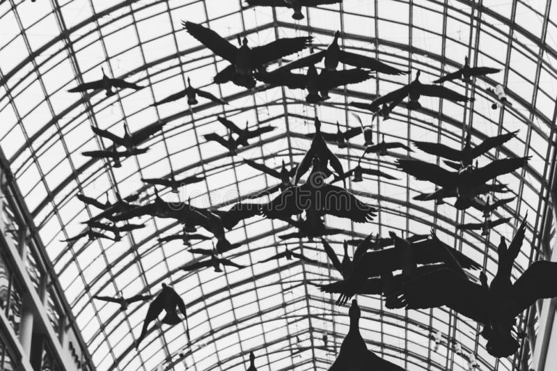 Artwork of flying geese in Eaton Centre stock photos