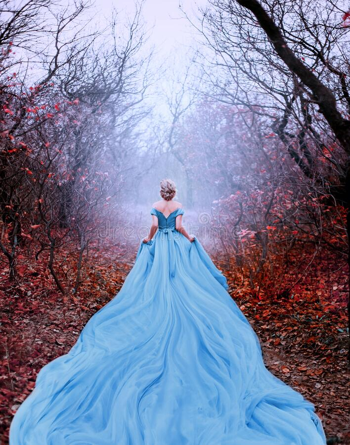 Free Artwork Photo Beautiful Silhouette Woman Princess Cinderella In Autumn Foggy Mystic Forest Tree. Luxury Magnificent Royalty Free Stock Photography - 184481157