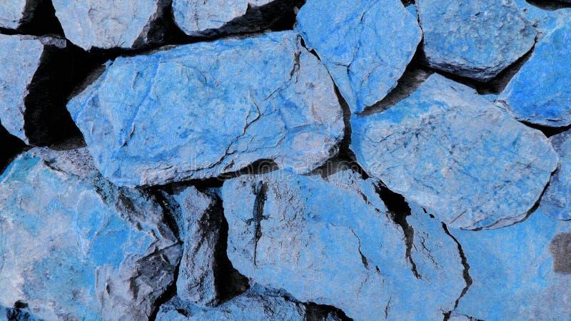 Artystyczna błękitna jaszczurka na głazach zdjęcia stock