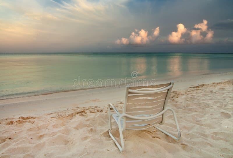 aruba海滩睡椅老鹰 免版税库存照片