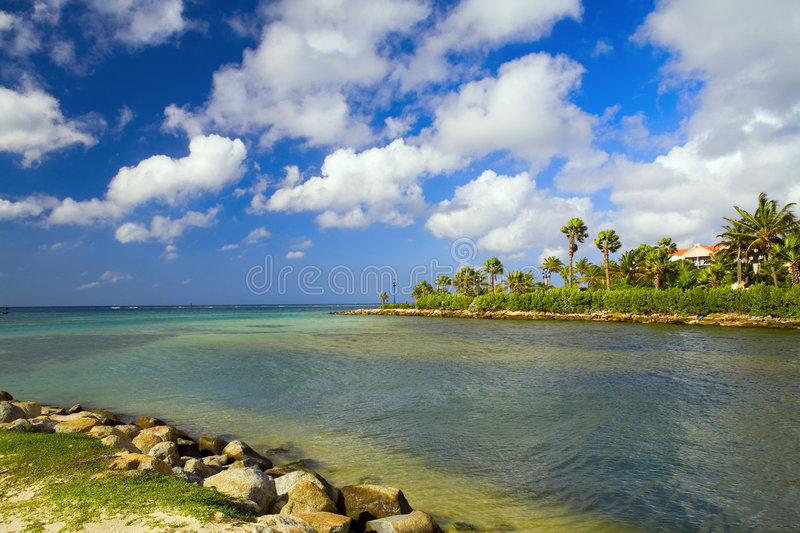 Aruba royalty free stock images