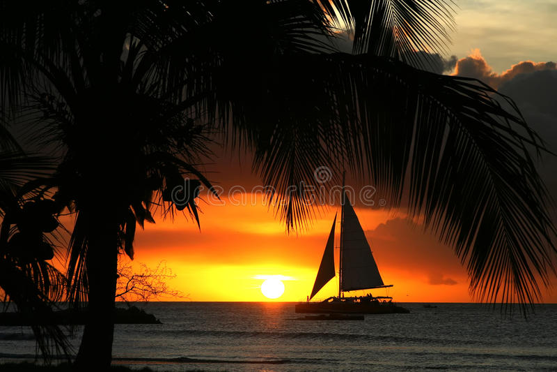 Aruba, Antilles hollandaises photo stock