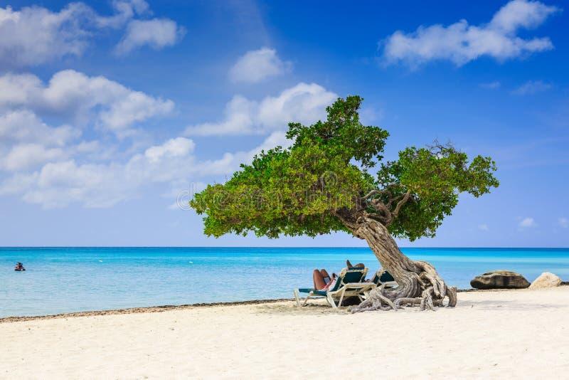 Aruba, Niederländische Antillen stockfotografie