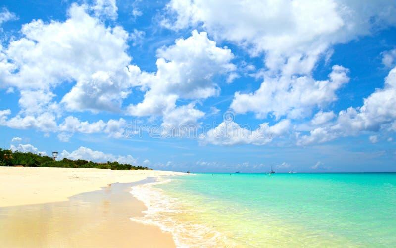 aruba oranjestad 原始白色沙子和水在老鹰海滩 覆盖严重 免版税库存图片