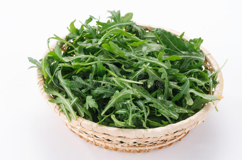 Download Arugula in the basket stock photo. Image of fresh, eating - 23936524