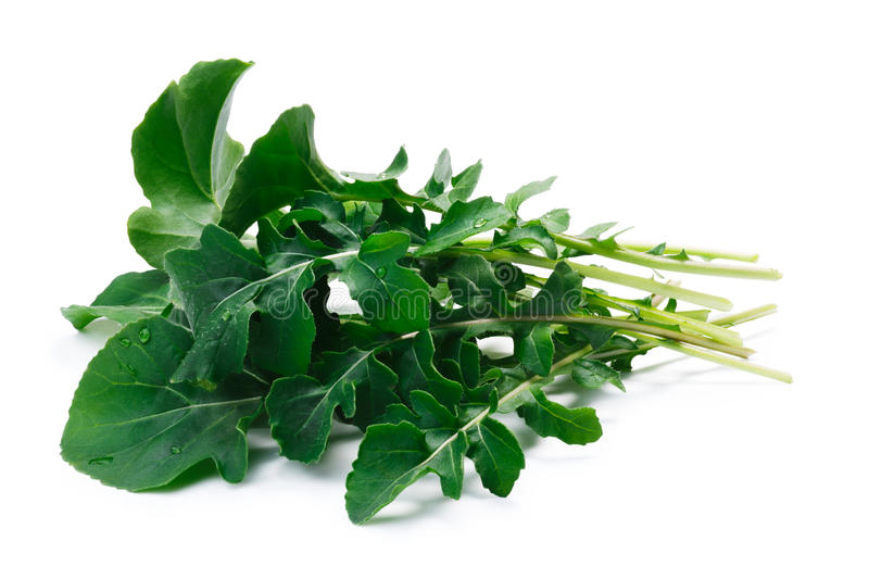 Arugula Eruca sativa, clipping paths. Fresh big-leaved arugula Eruca sativa leafy salad. Clipping paths, shadow separated. Natural daylight color royalty free stock photography