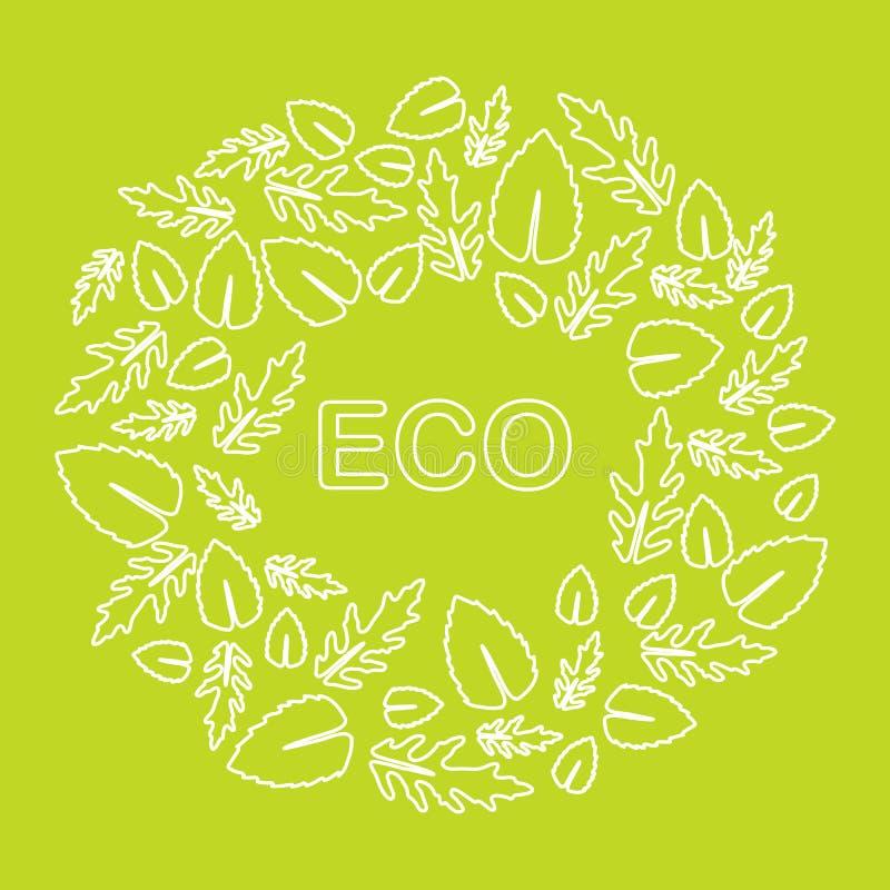 Arugula, hojas de la albahaca Eco, vegano, bio, org?nico libre illustration