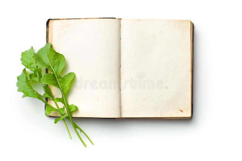 Arugula leaves on old book. The arugula leaves on old book stock photography