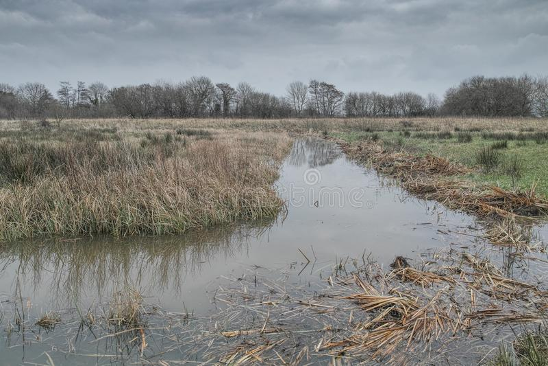 Arun Wildbrooks Floodplain royalty-vrije stock afbeeldingen