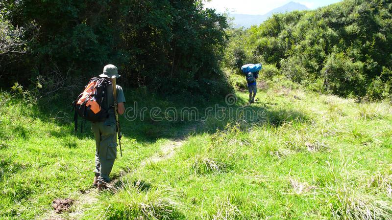 Armed national park ranger and local porters hiking towards the summit of Mount Meru in Arusha National Park in Tanzania. Arusha National Park, Kilimanjaro royalty free stock images