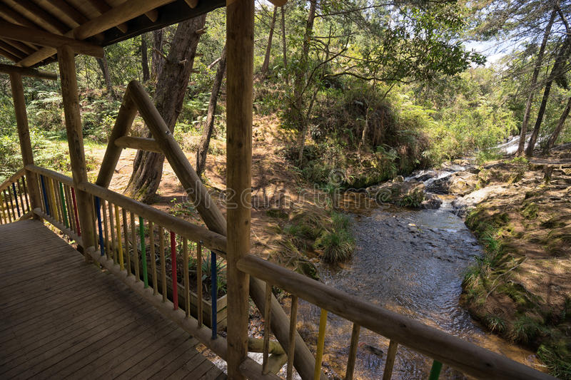 Wood bridge crossing a small river in Arvi park Medellin Colombia royalty free stock photos