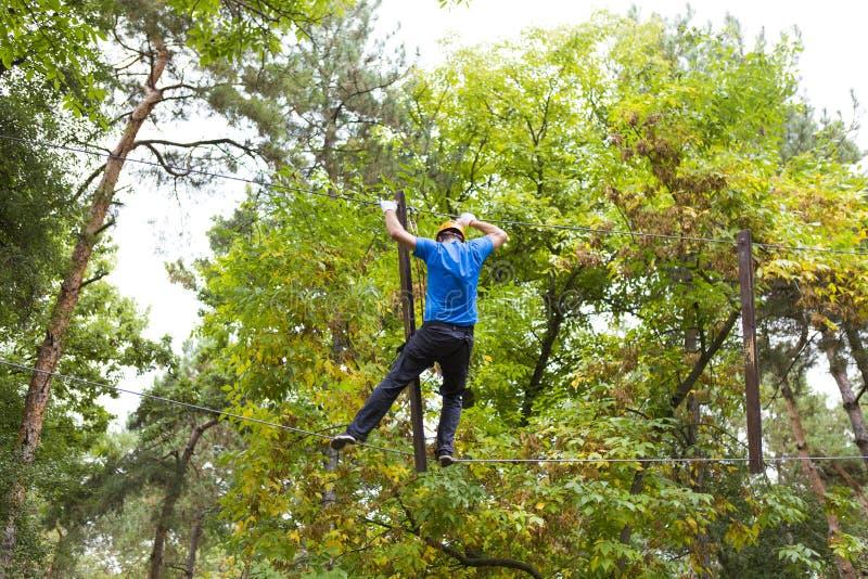 Arywista w Comana przygody parku zdjęcia stock