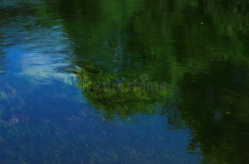 Download As árvores & As Gramas Refletiram No Rio Foto de Stock - Imagem de nave, reflexão: 527980