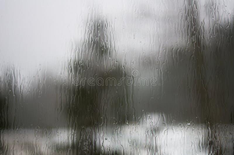As árvores distorceram através dos pingos de chuva em uma placa de indicador fotos de stock