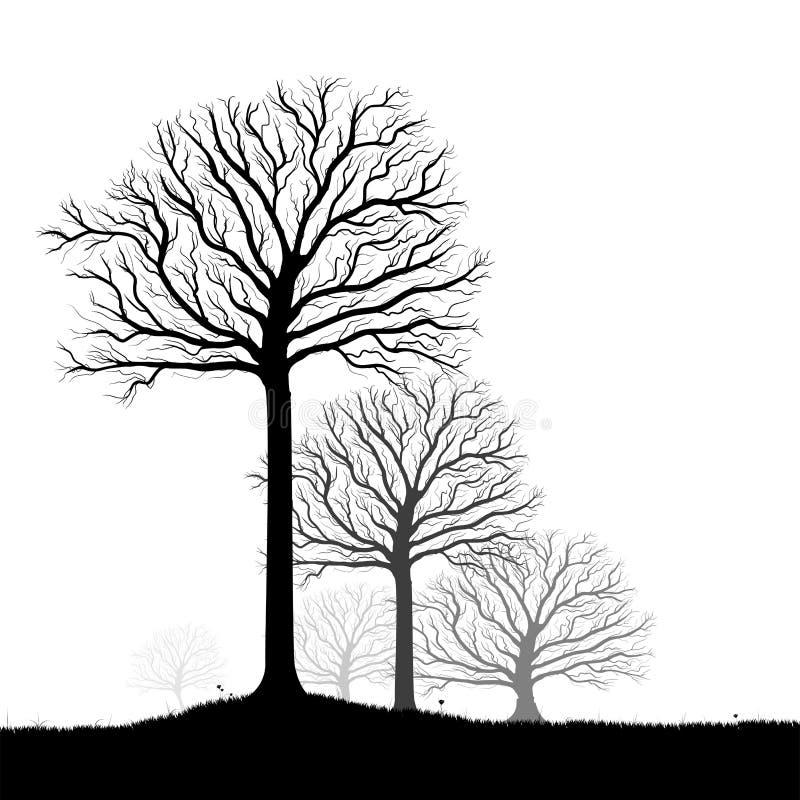 As árvores mostram em silhueta, enegrecem o vetor branco ilustração royalty free