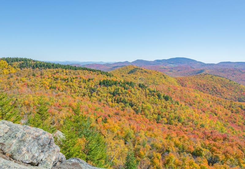As árvores mostram suas cores verdadeiras através de uma paisagem montanhosa fotografia de stock royalty free