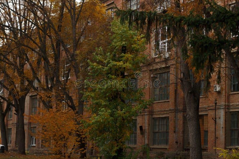As árvores na frente da grande construção industrial do tijolo vermelho imagens de stock royalty free