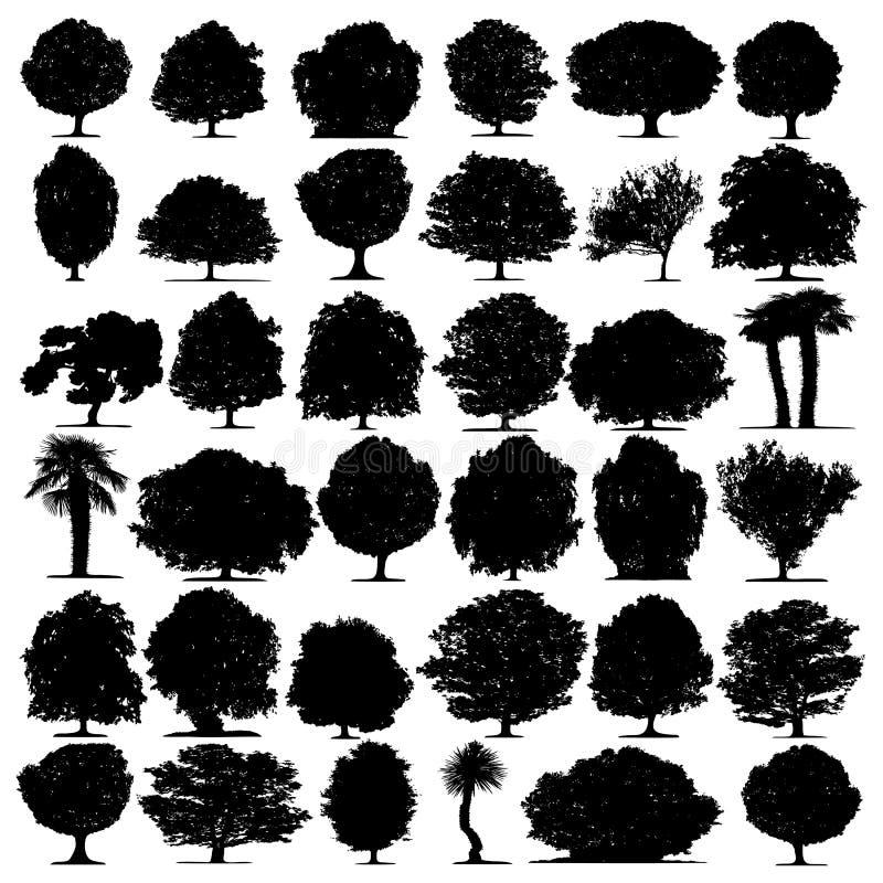 As árvores vector no fundo branco ilustração do vetor