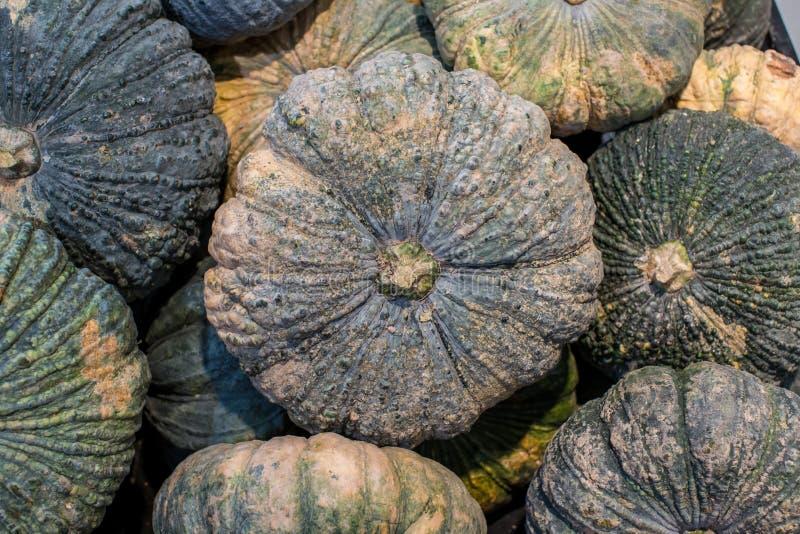 As abóboras asiáticas empilharam Pilha da abóbora vendida no mercado de produto fresco A abóbora é uma planta pode ser usada foto de stock