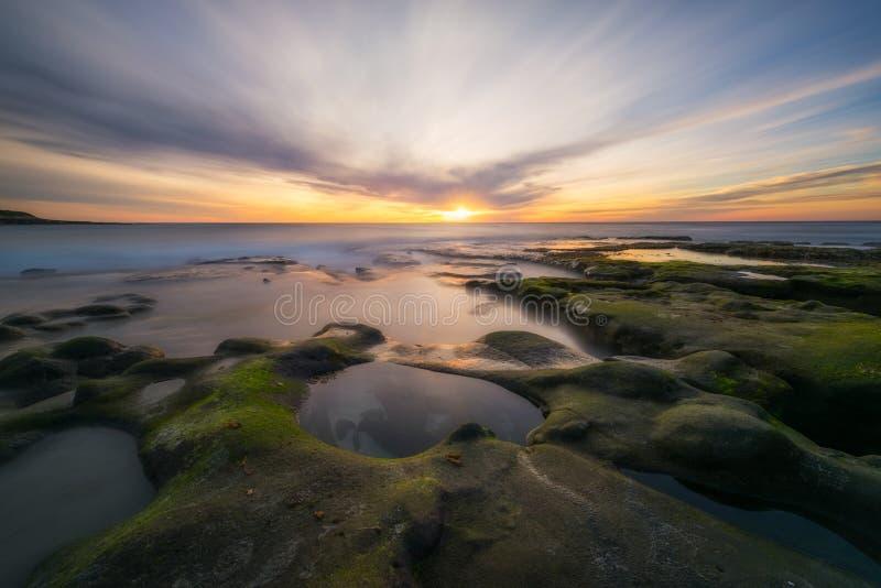 As algas cobriram rochas e associações da maré em La Jolla Califórnia fotos de stock