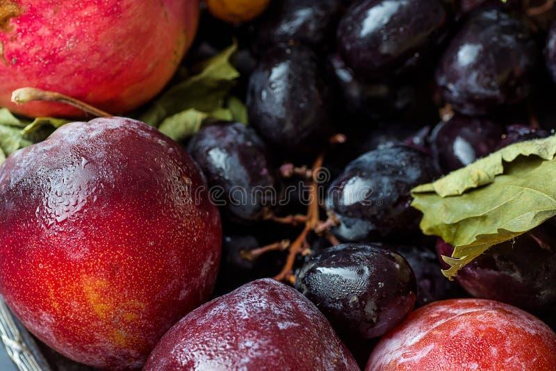 As ameixas vermelhas das uvas roxas de Autumn Fall Fruits Organic Pomegranates secam as folhas perto acima da colheita imagens de stock royalty free
