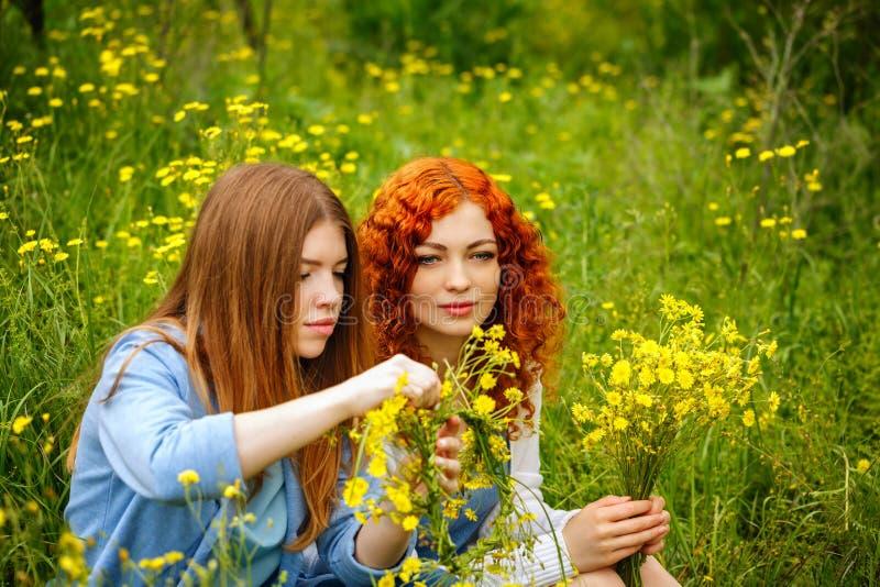 As amigas recolhem wildflowers fotos de stock