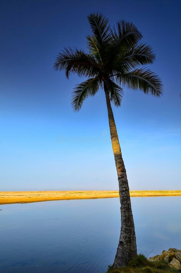 As areias e o laguna brancos com uma palmeira e o barco imagem de stock