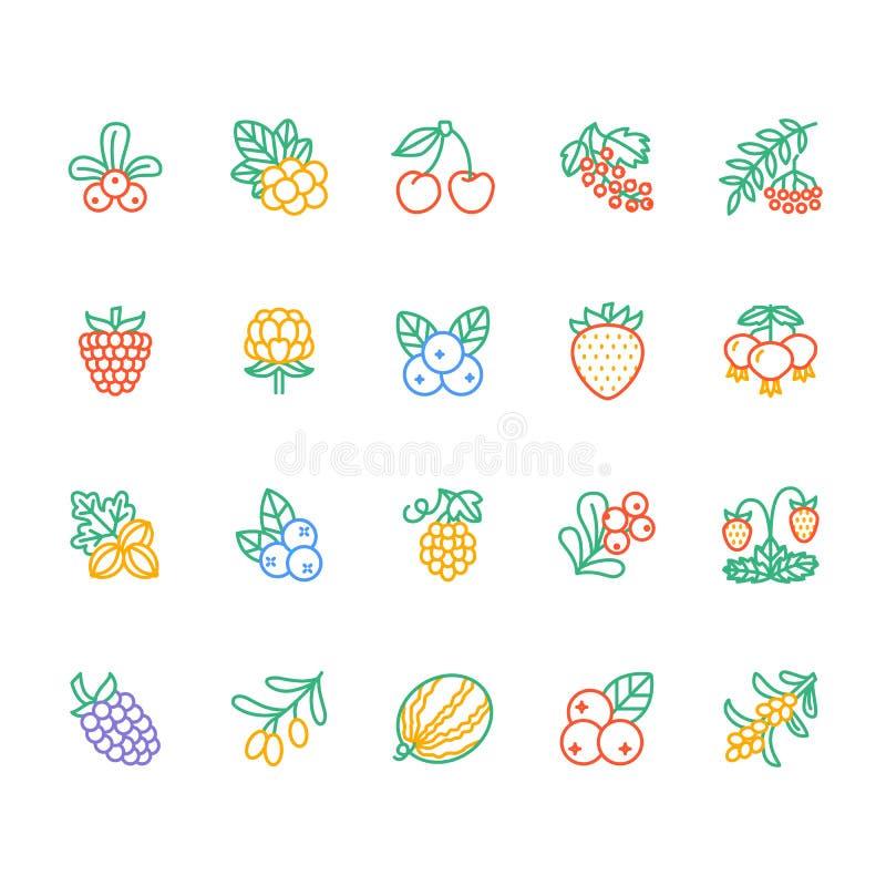 As bagas da floresta coloriram a linha lisa ícones - mirtilo, arando, framboesa, morango, cereja, amora-preta da baga de Rowan ilustração do vetor