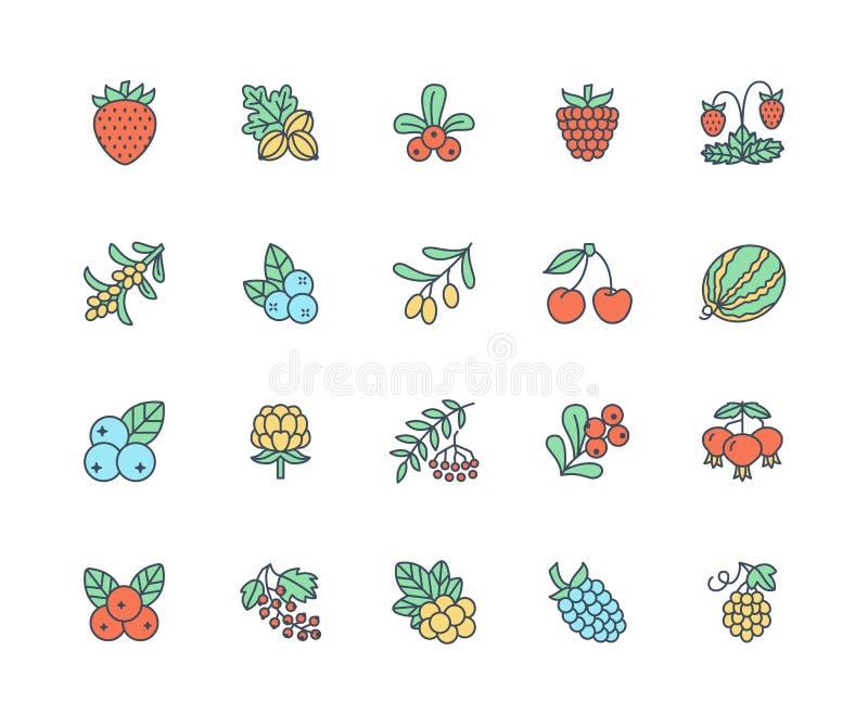 As bagas da floresta coloriram a linha lisa ícones - mirtilo, arando, framboesa, morango, cereja, baga de Rowan, amora-preta ilustração stock