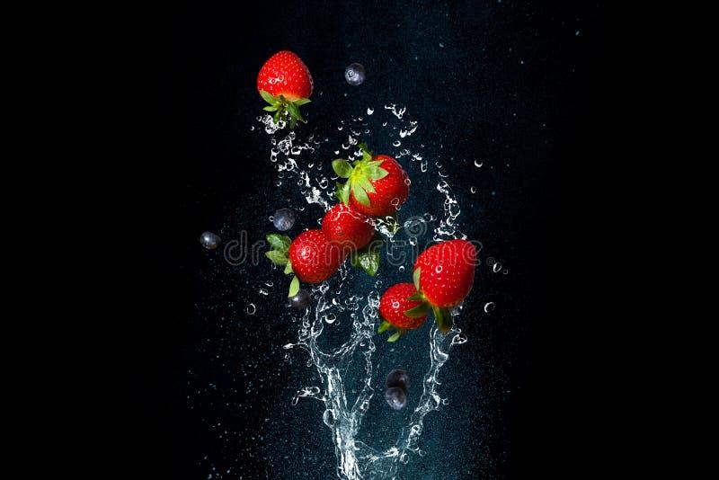 As bagas frescas espirram dentro da água no fundo preto Morangos suculentas fotografia de stock royalty free