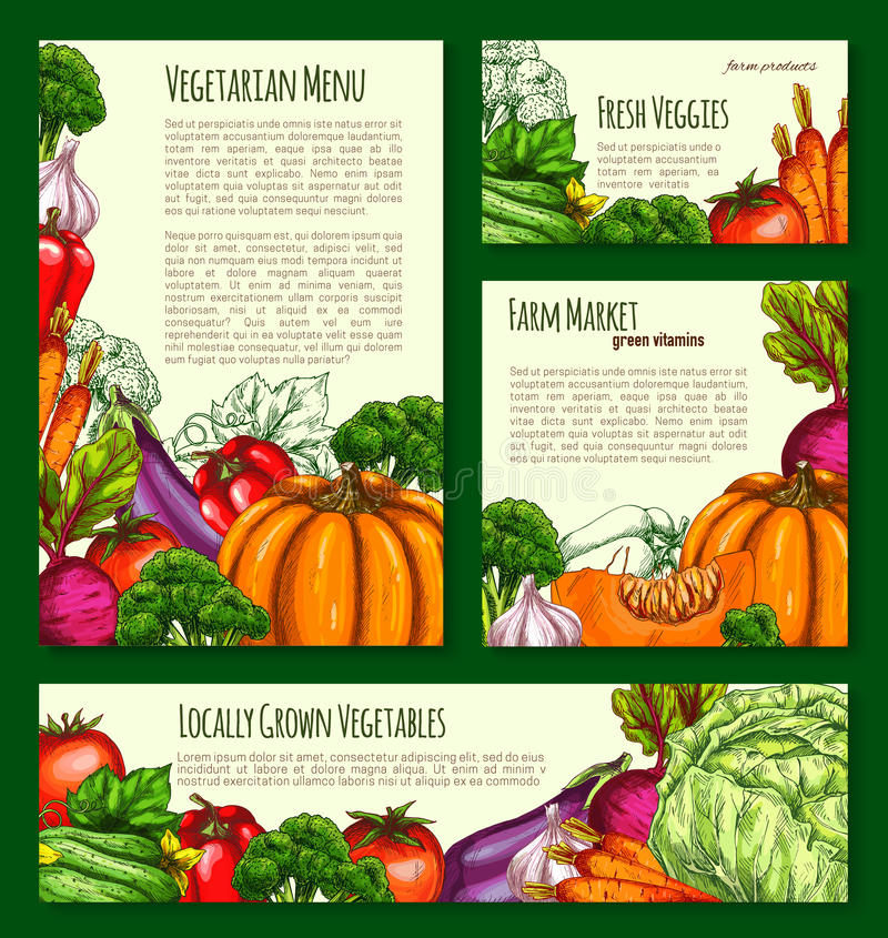 As bandeiras as mais havest e cartazes do vetor dos vegetais ajustados ilustração royalty free