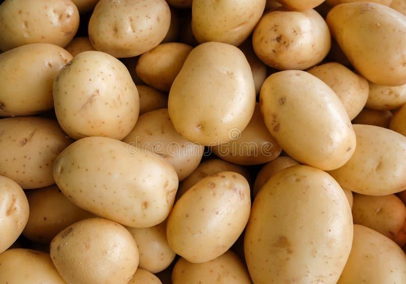 As batatas novas da colheita no mercado local da exploração agrícola fotos de stock