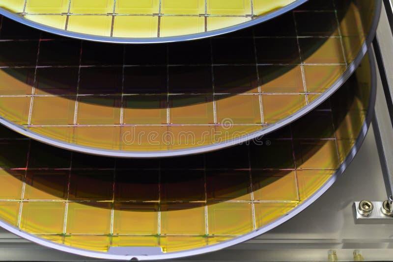 As bolachas de silicone na caixa de aço do suporte em uma bolacha da tabela A são uma fatia fina de material do semicondutor, tal fotos de stock royalty free